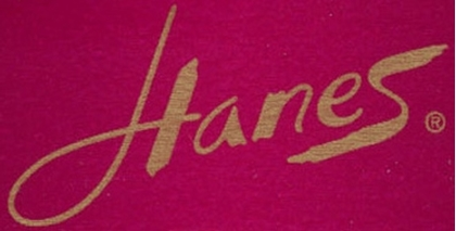Picture for manufacturer Hanes
